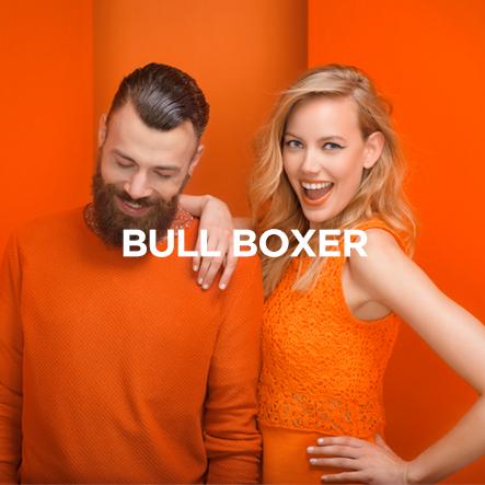 Bull Boxer
